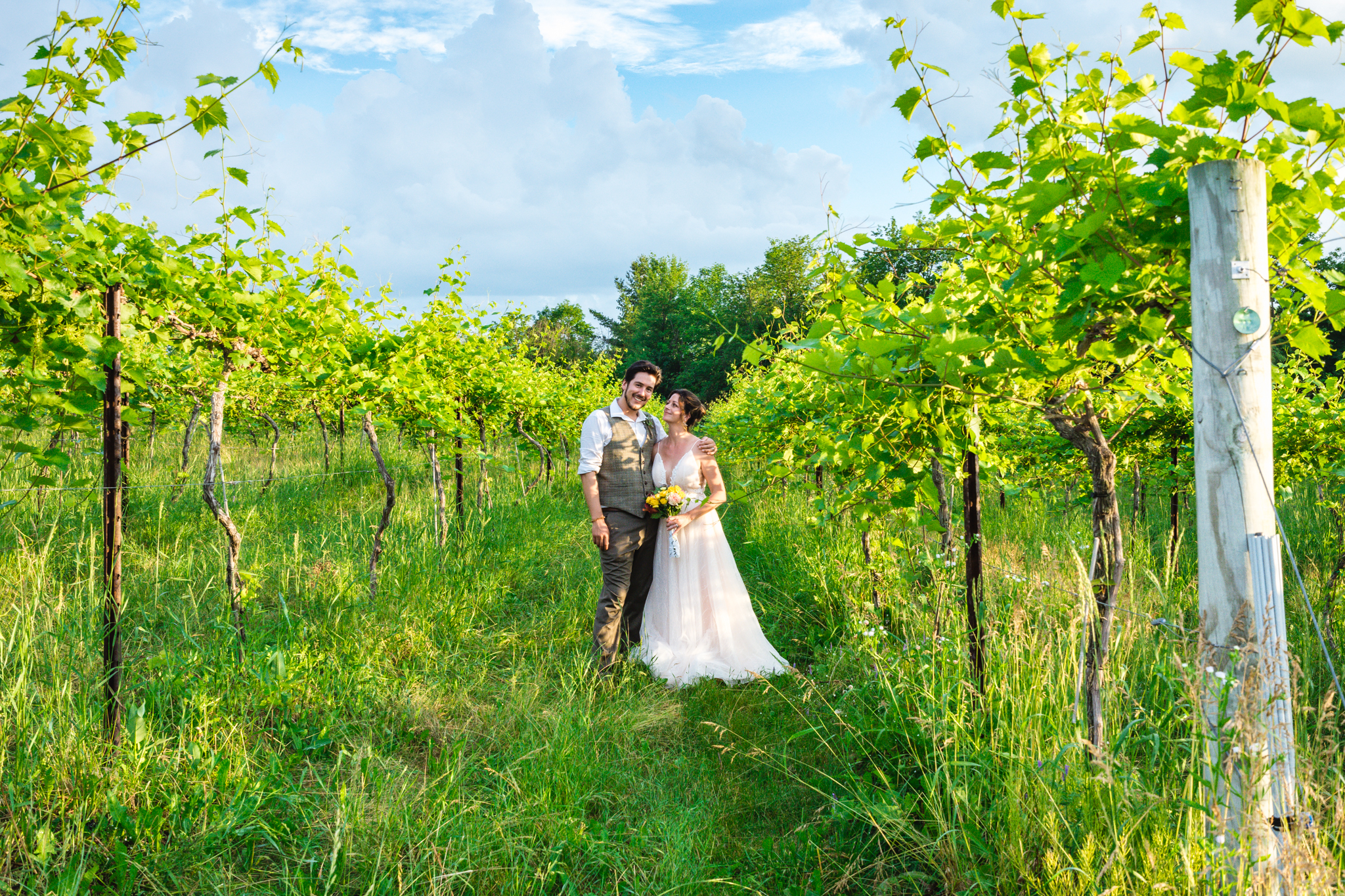 Shelburne-Vineyard-Wedding-81.jpg