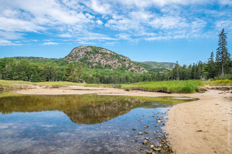 WM-Acadia.jpg