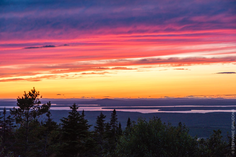 WM-Acadia-Websize-9409.jpg