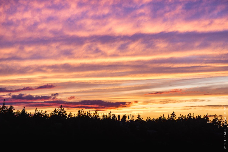 WM-Acadia-Websize-9366.jpg