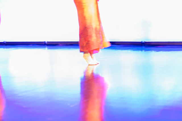 Embody Your Muse - Celebrating Twenty Years -  Blue Moves Modern Dance Company