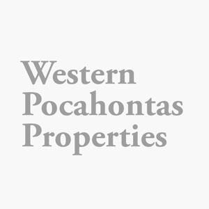 WPP-logo.png