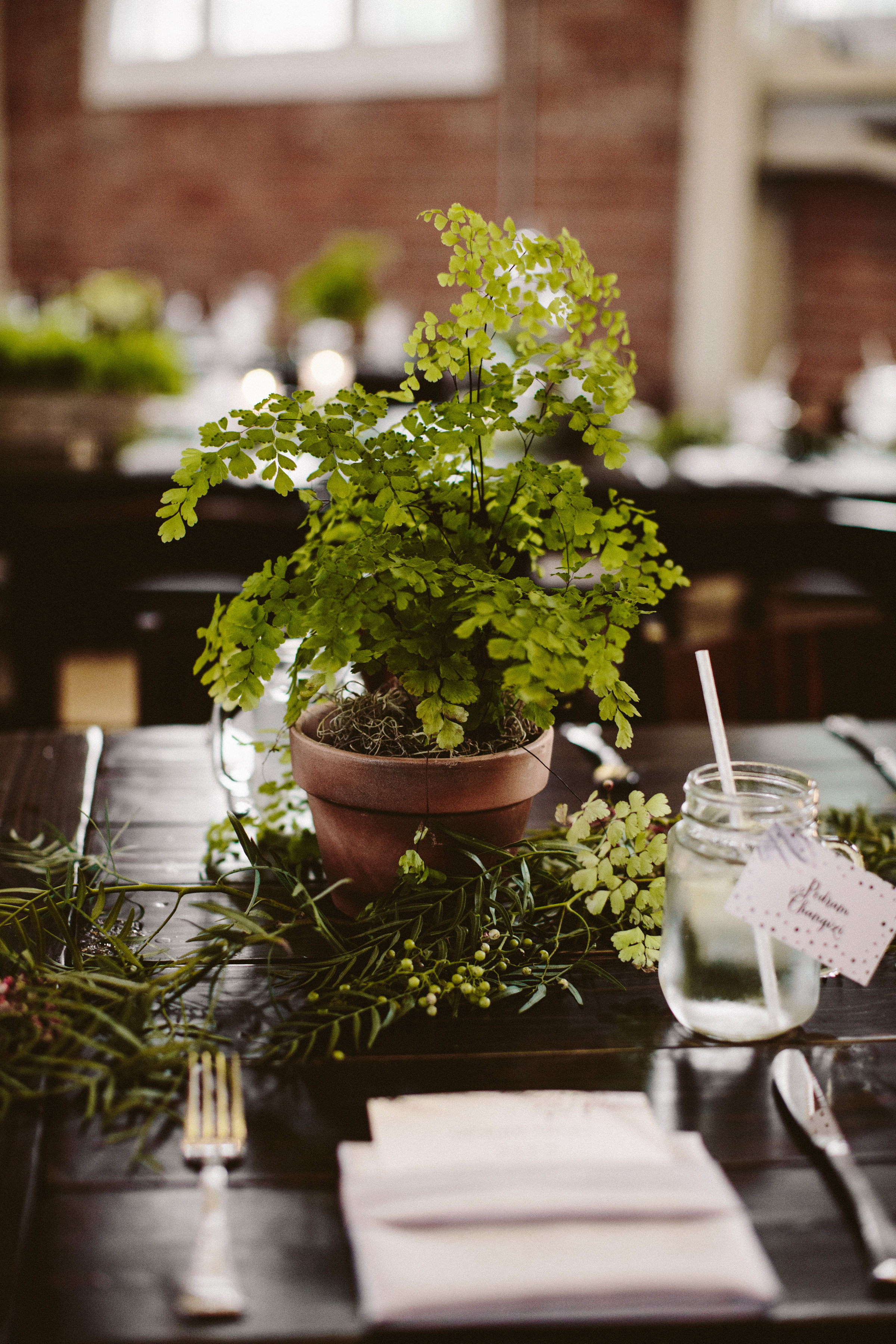 A mix of herbs, fern, and pothos plants ran down the length of each farm table.