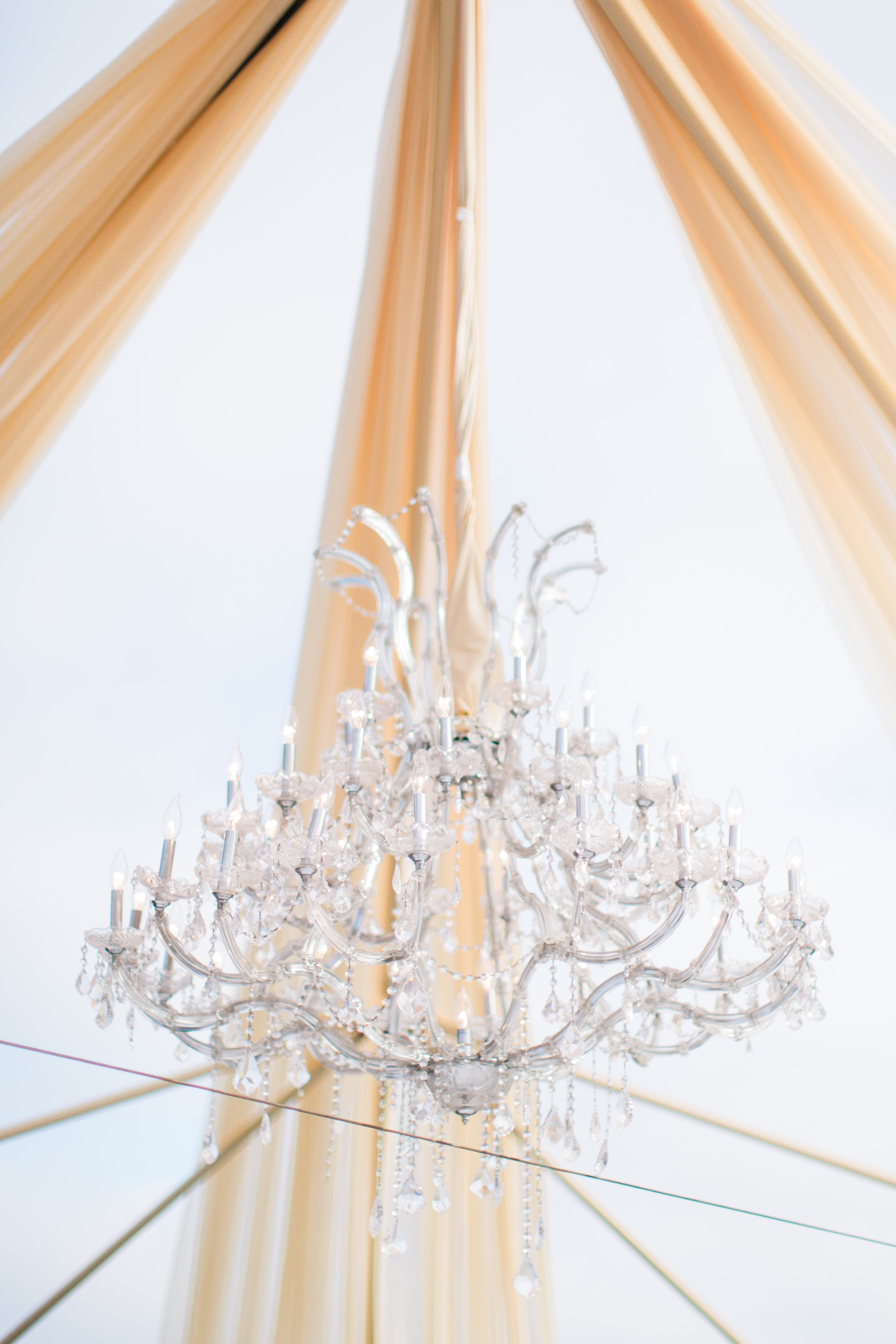 Classic Party Rentals draping, tent, and chandelier