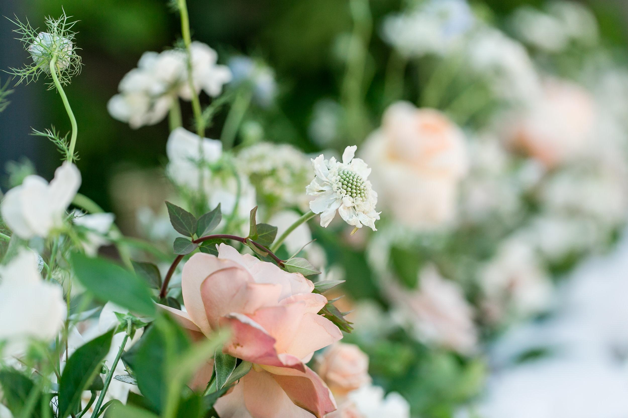 Julie_Ferneau-blooms-rancho-valencia-ribeau-wedding-rancho-santa-fe-luxury-garden-wedding-7.jpg