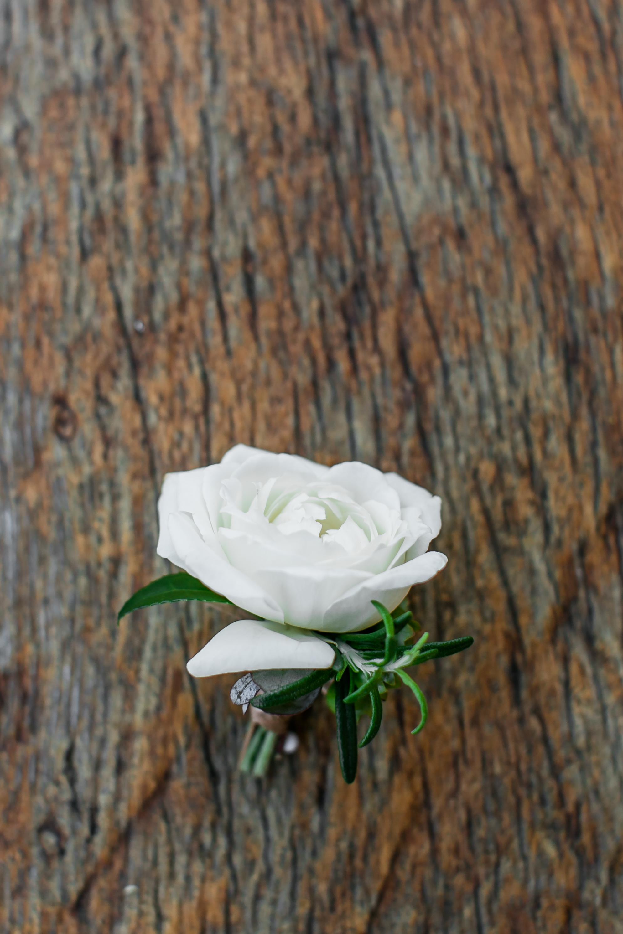 Julie_Ferneau-blooms-rancho-valencia-ribeau-wedding-rancho-santa-fe-luxury-garden-wedding-10.jpg