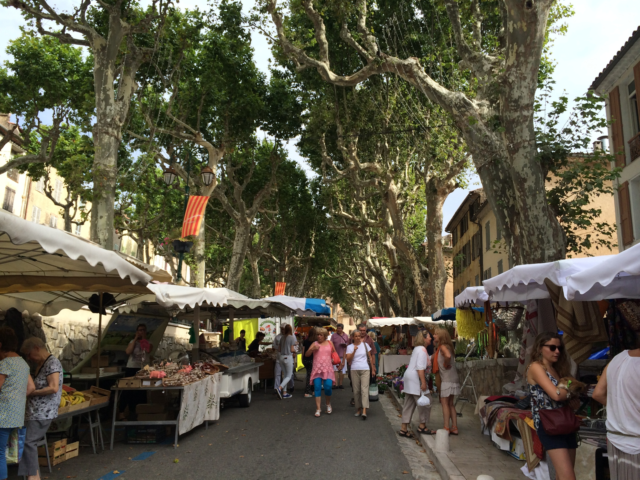 Market Day in Cotignac