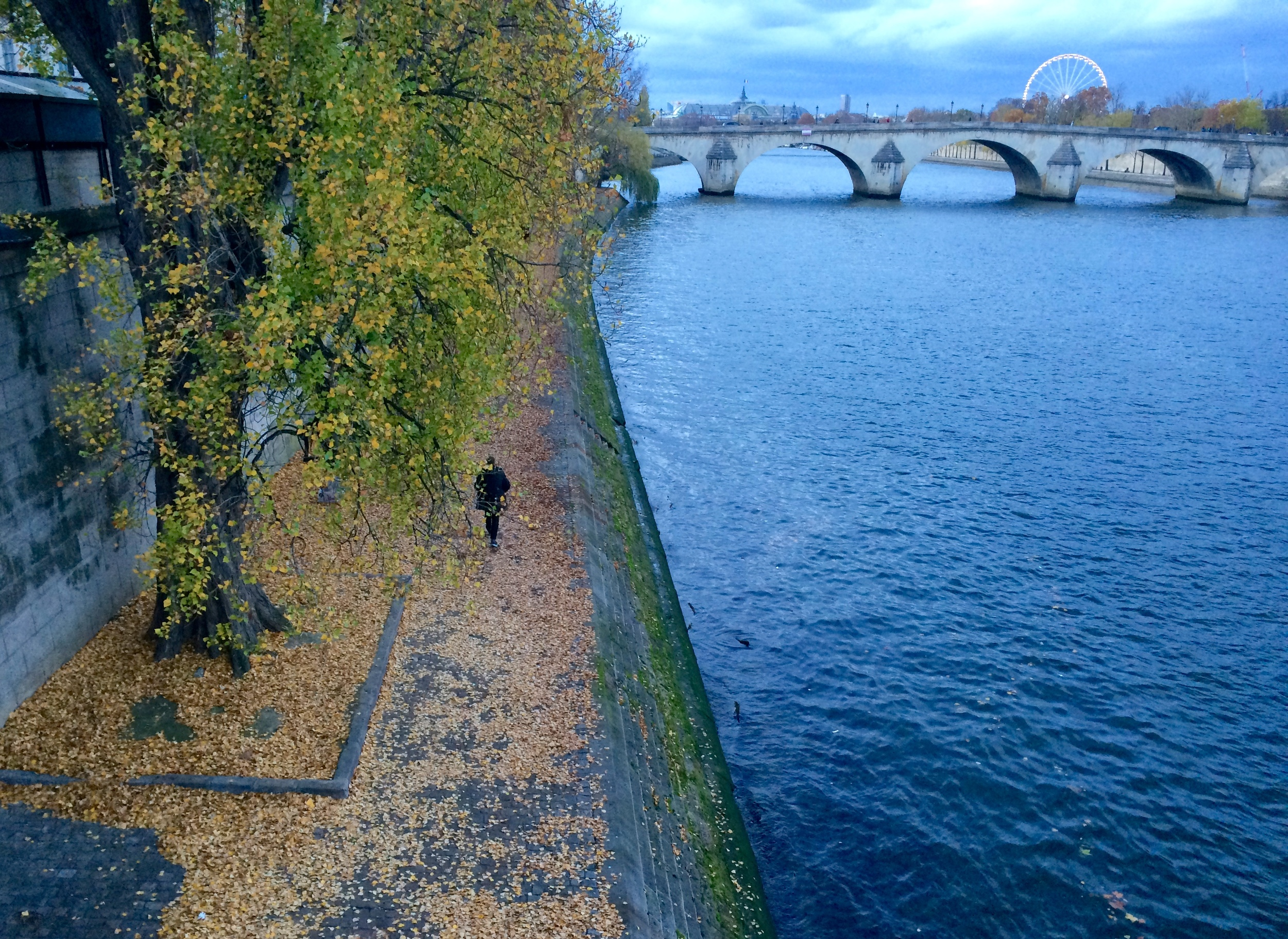 Gray Sunset Along the Seine