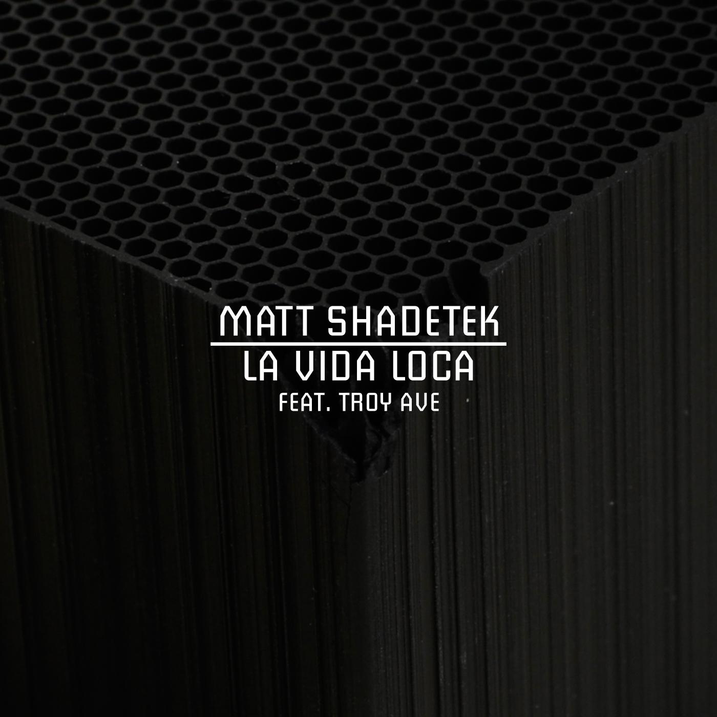Matt Shadetek feat. Troy Ave. - La Vida Loca