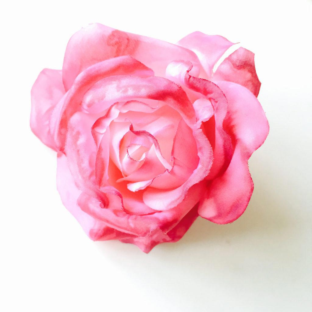 Beauty_and_the_nature_fake_rose_halloween.jpg