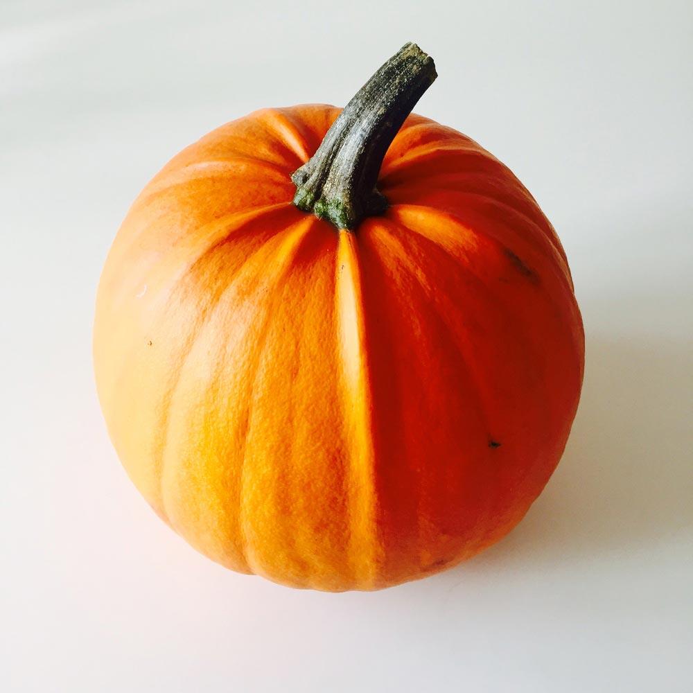 Beauty_and_the_nature_pumpkin.jpg