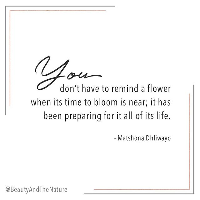 When the time has come - you'll know! And when the time has come - don't hold back! Allow yourself to bloom! ⠀⠀⠀⠀⠀⠀⠀⠀⠀ You've been preparing for this your entire life! ⠀⠀⠀⠀⠀⠀⠀⠀⠀ ⠀⠀⠀⠀⠀⠀⠀⠀⠀ ⠀⠀⠀⠀⠀⠀⠀⠀⠀ #lawofattraction #lawofattractionquotes #lifestyleblogger #veganblogger #lawofattractionworks #vegangirl #positivemind #highvibes #goodvibesonly #bossbabe #spiritualbosslady #livingthegoodlife #holisticliving #divinefeminine #livinginfullbloom #manifestationcoach #manifestyourlife #alchemy #bloomandgrow #spiritjunkie #manifesting #bloggerlife #bloombabe #selfloveclub #selfdevelopment #selfhelp #holisticblogger #selfgrowthjourney