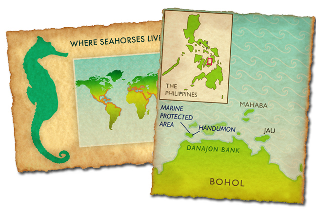 Maps I drew for  Project Seahorse.   AD: Sheila Smallwood