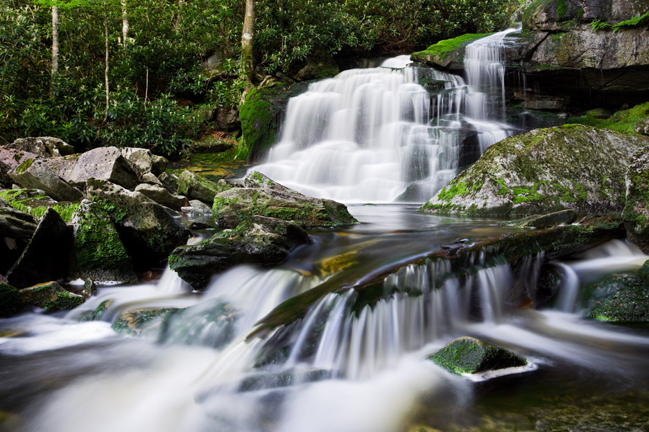"""""""Spirit of Elakala"""" - A waterfall along mossy Elakala Run. Blackwater Falls State Park, West Virginia."""