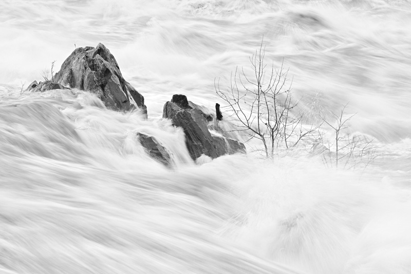 Flooding in the Potomac River, Great Falls National Park, Virginia, United States.