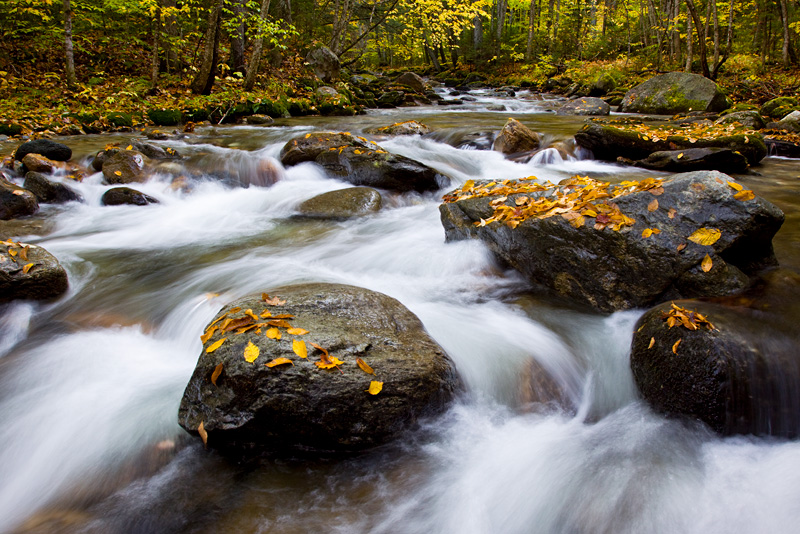 A Beautiful Creek in Autumn, Green Mountain National Forest, Vermont, United States.