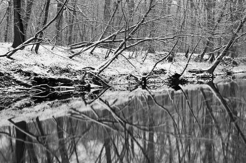 """First Snow"", Manassas Battlefield National Park, Virginia."