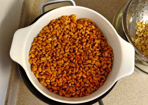 sprouted-tepary-beans.jpg