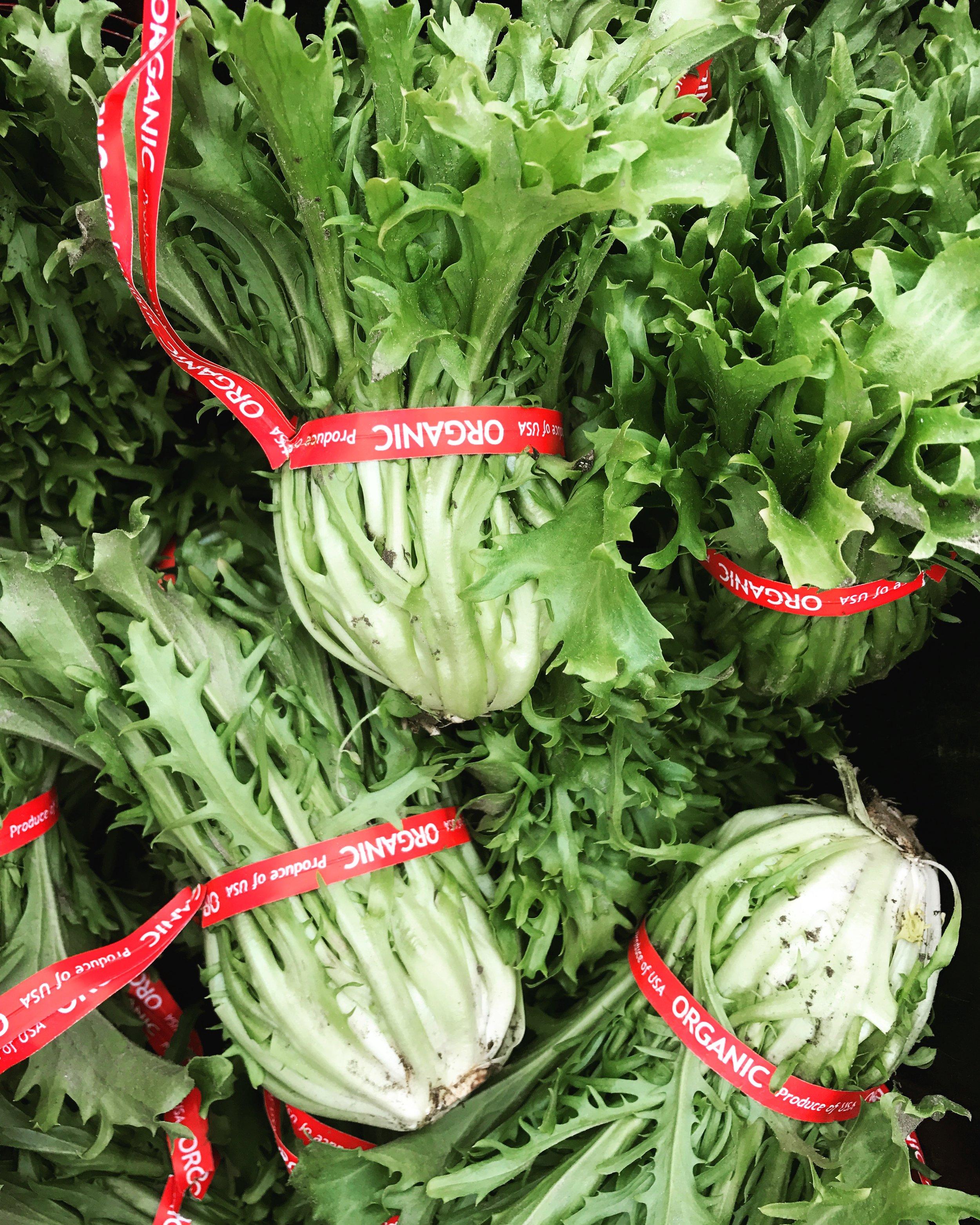organicfriseeburlingtonfarming.jpg