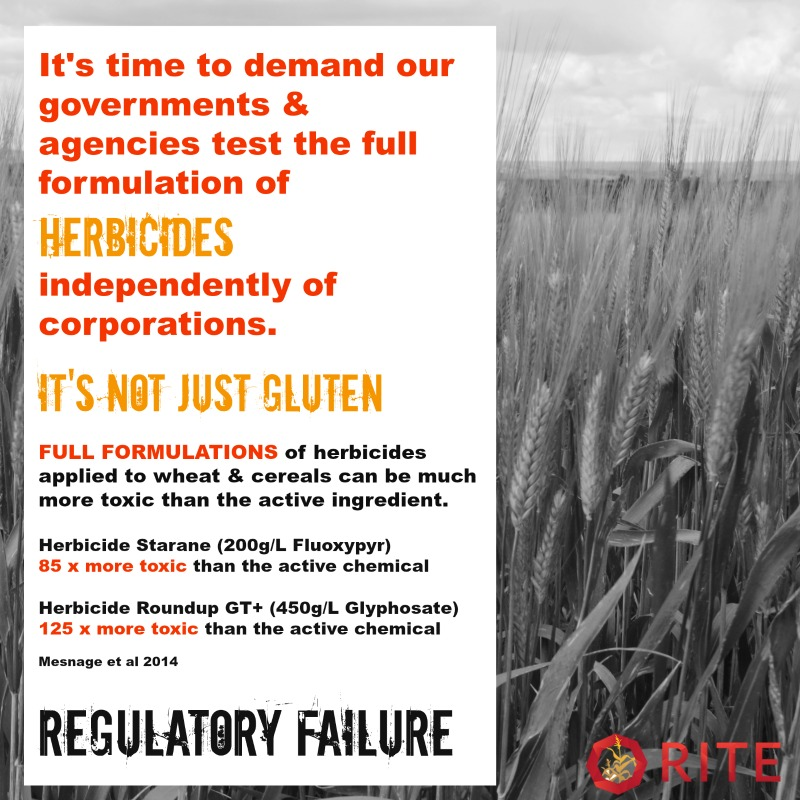 full formulation of herbicides sprayed on wheat needs to be assessed