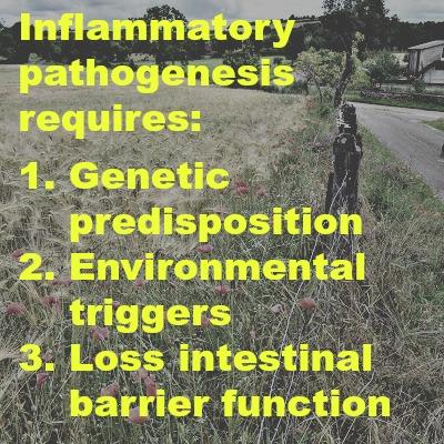 3 factors autoimmune disease