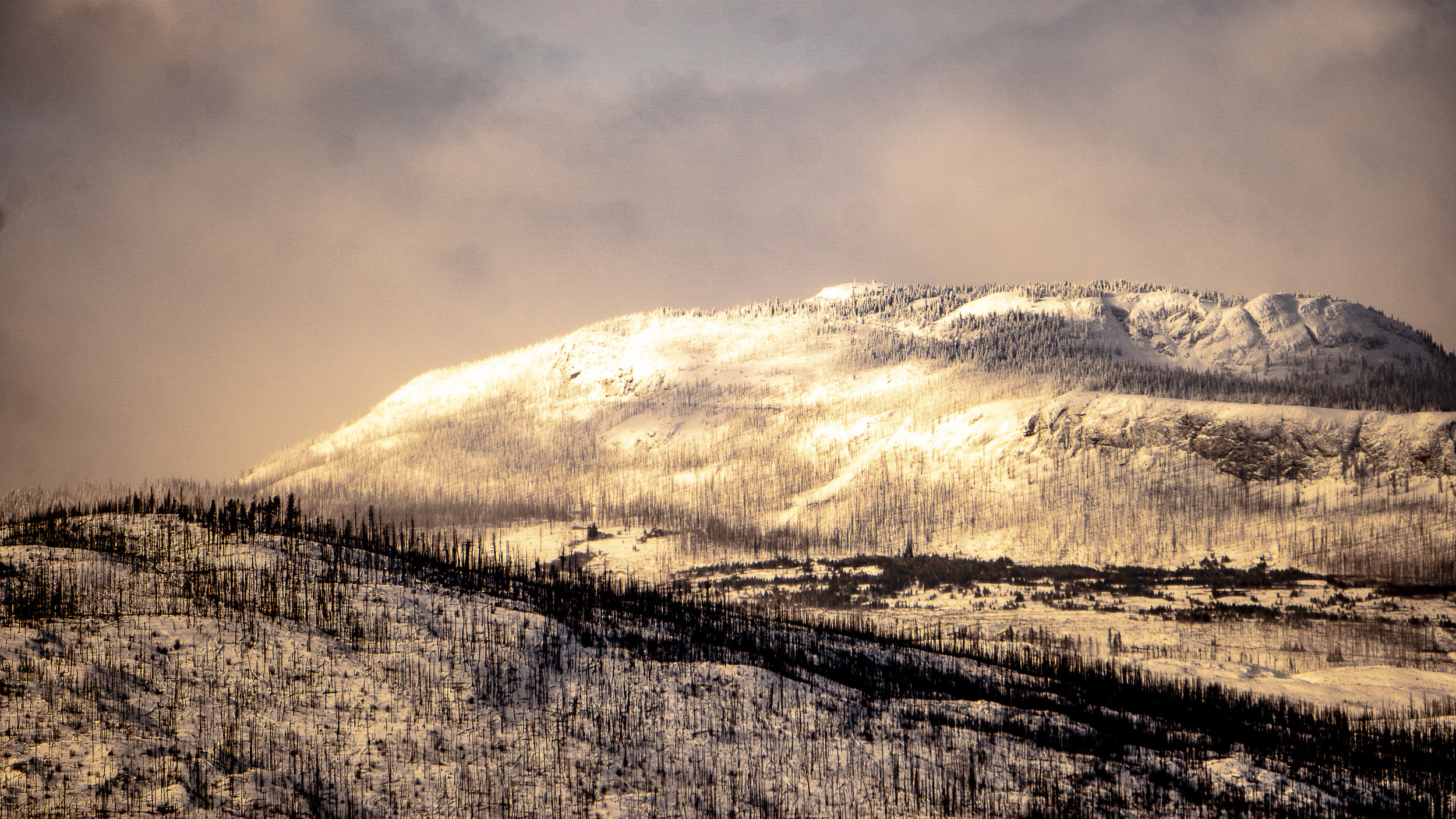 Terrace Mountain.jpg