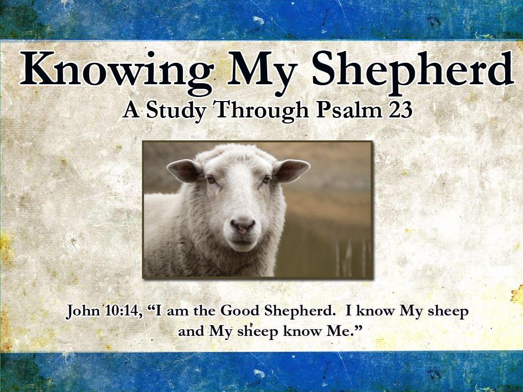 Current Sermon Series: Knowing My Shepherd
