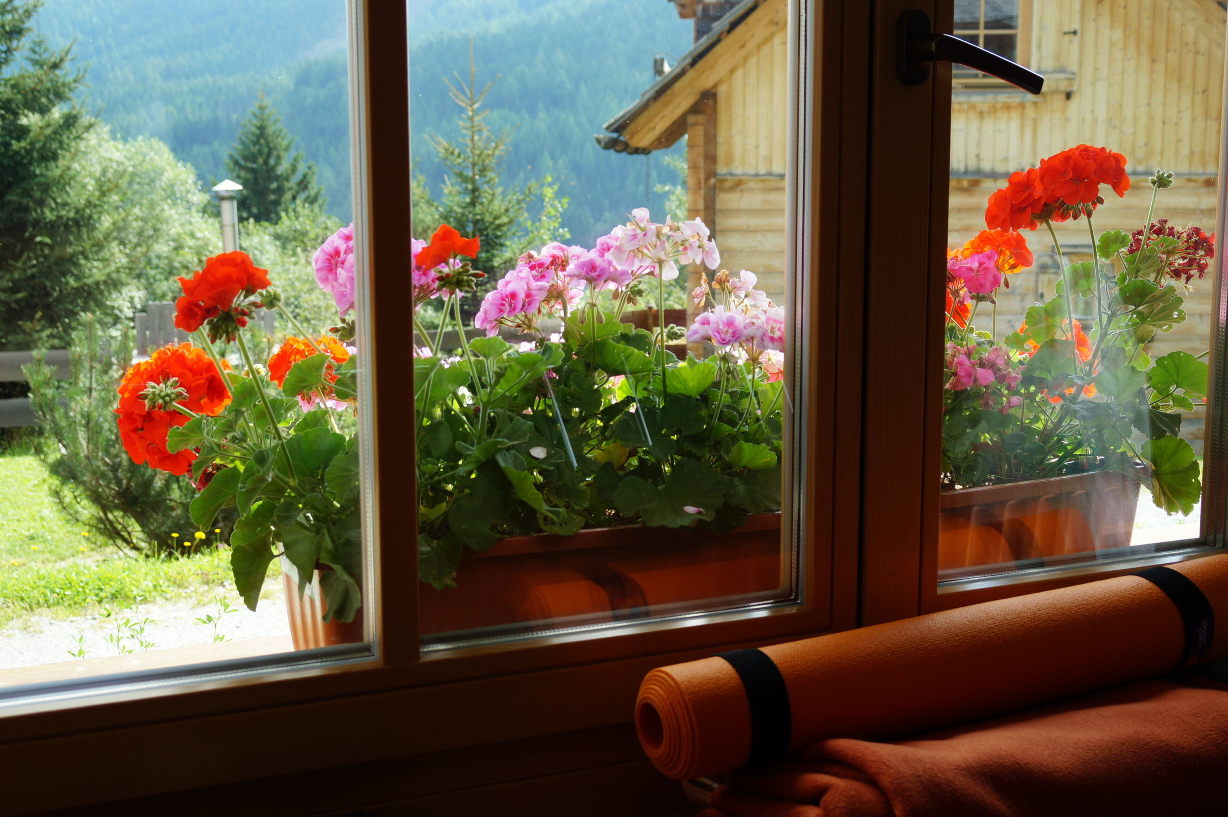 Now we start the Yoga and Detox Retreat photo series: what a view out of the yoga room...