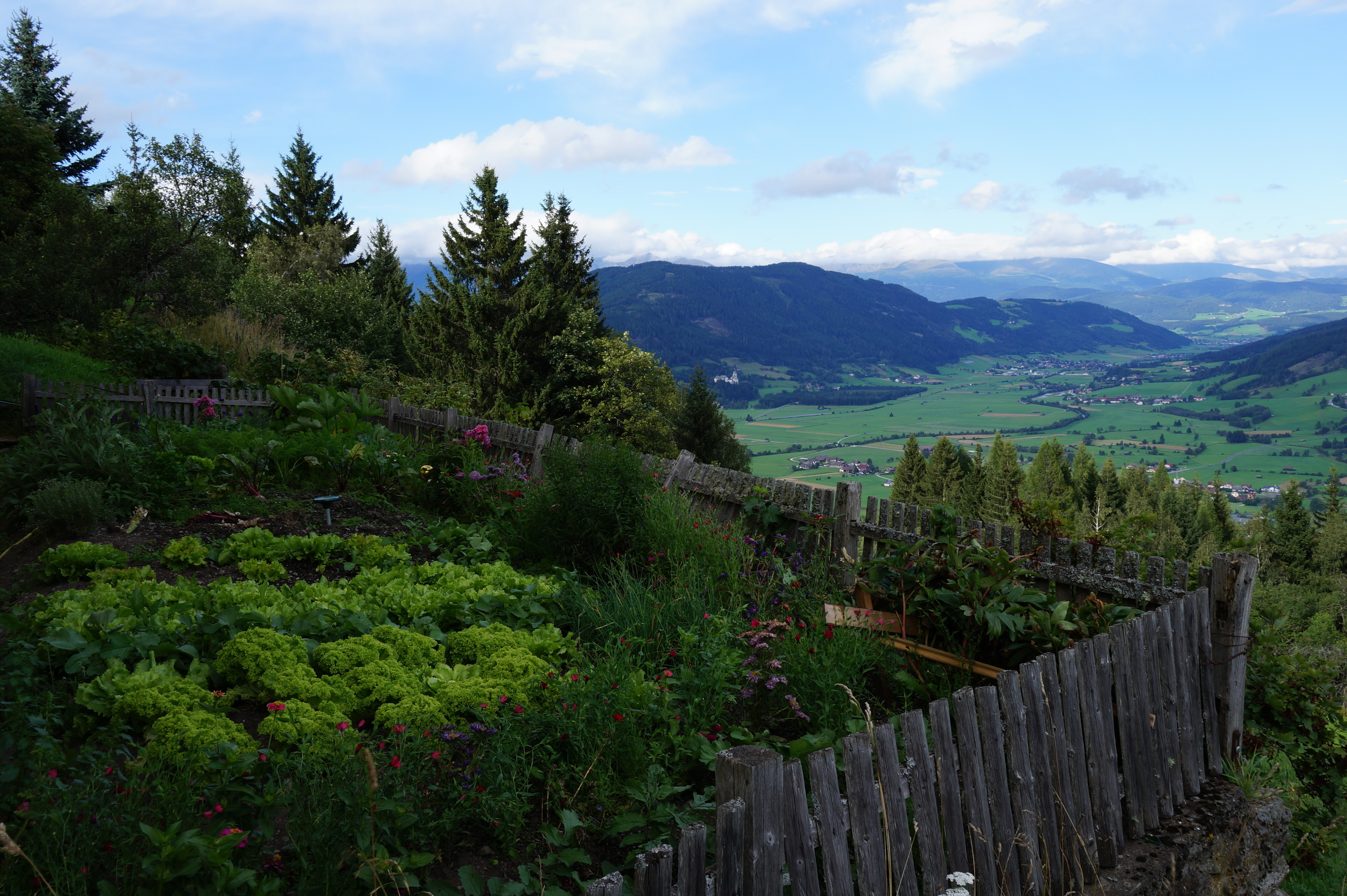 A vegetable garden with a view!
