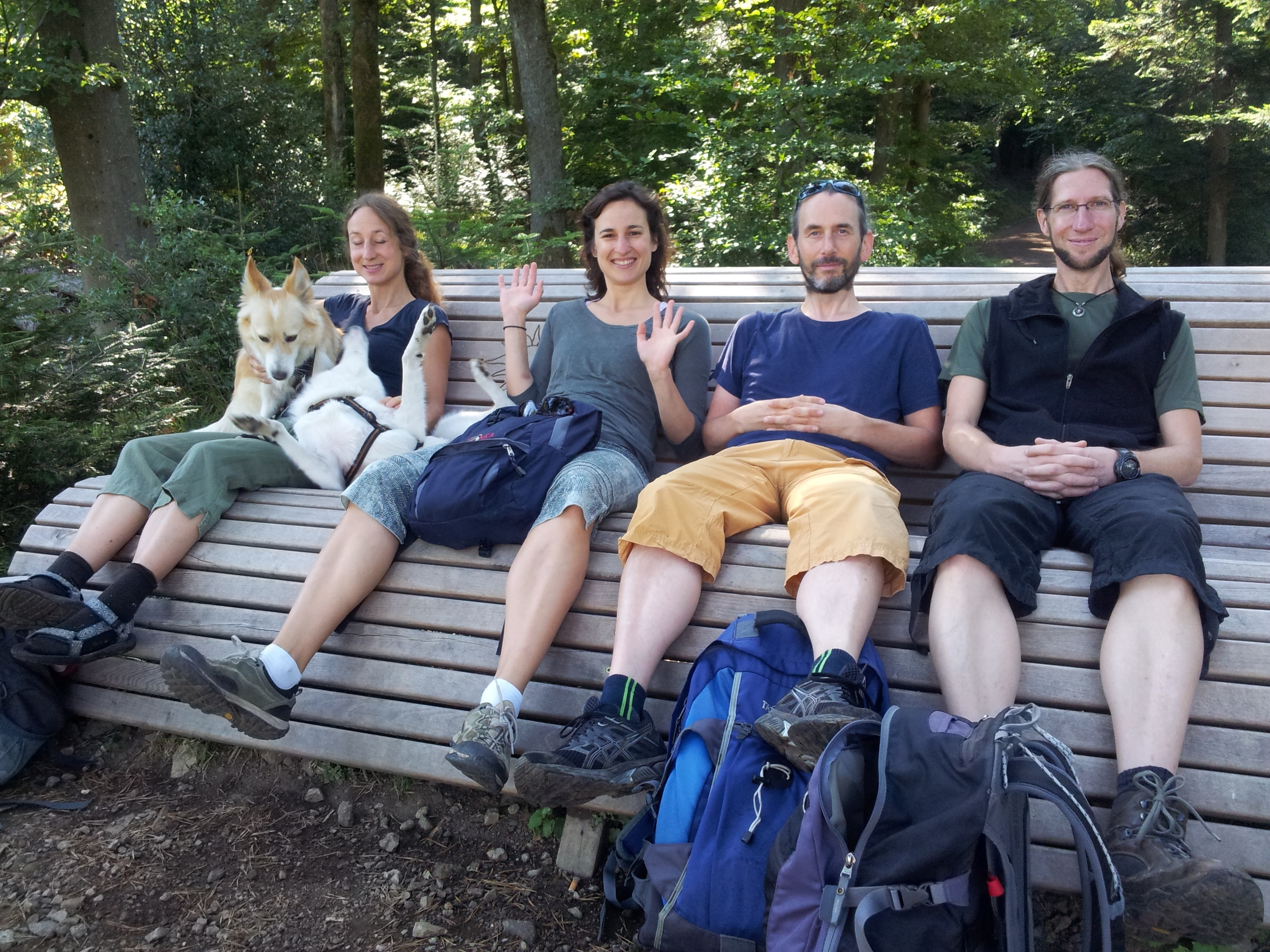 The vegan Freiburg walking crew took me for a hike up the highest peak, with two vegan dogs!