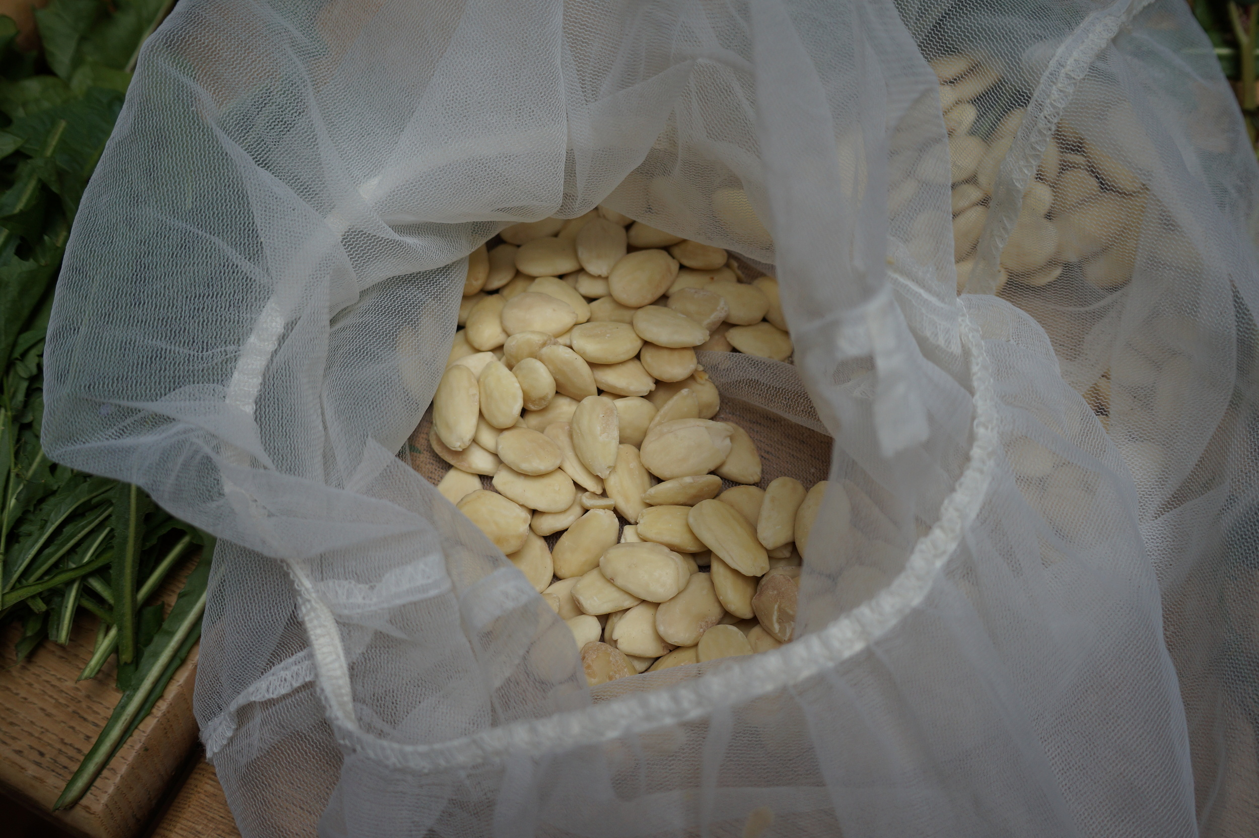 Those were the BEST almonds ever, from Spain..