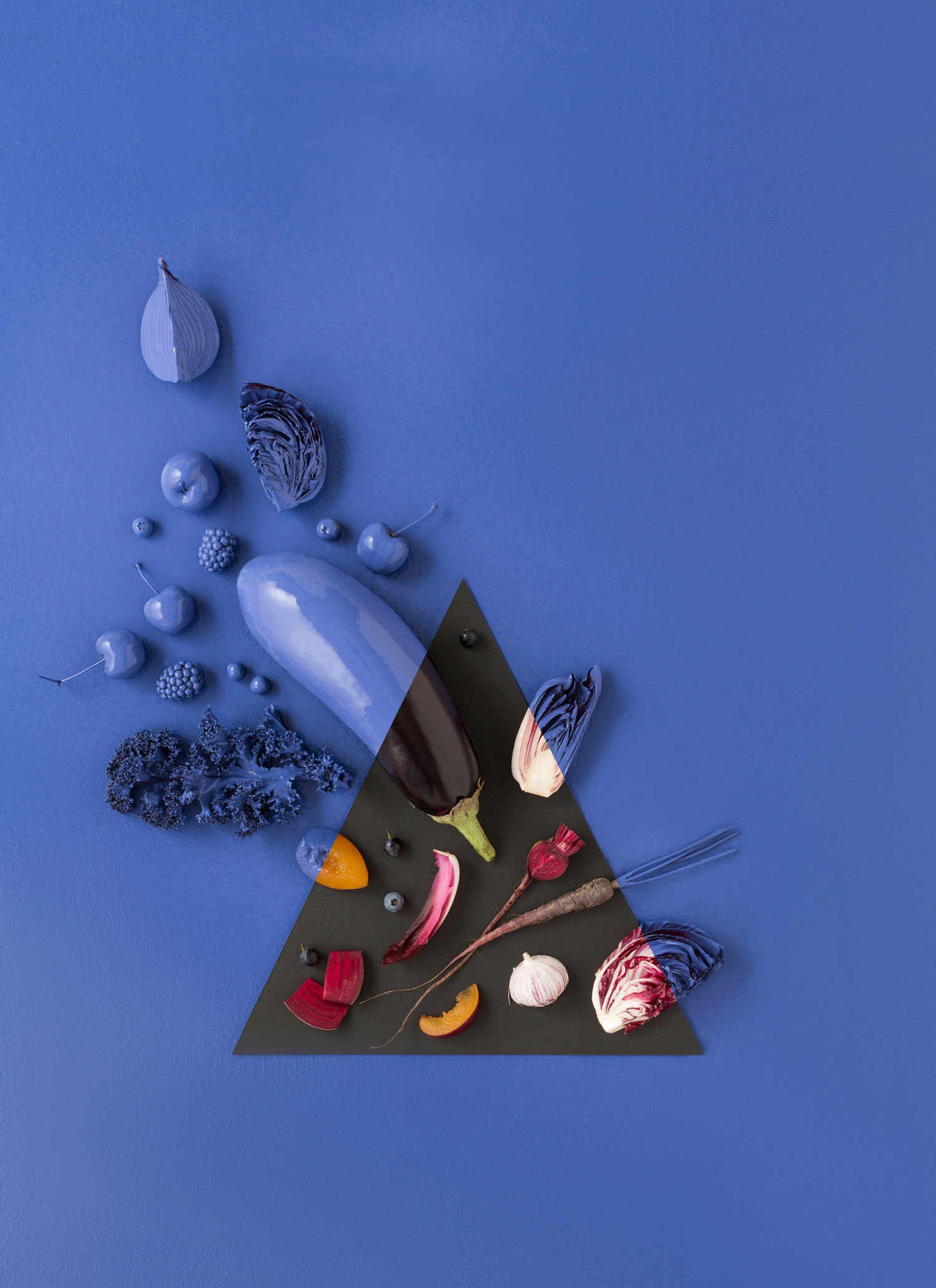 Blue purple study. Photo - Sarah Anderson. Art Direction/ Styling - Zoe Hodgens.