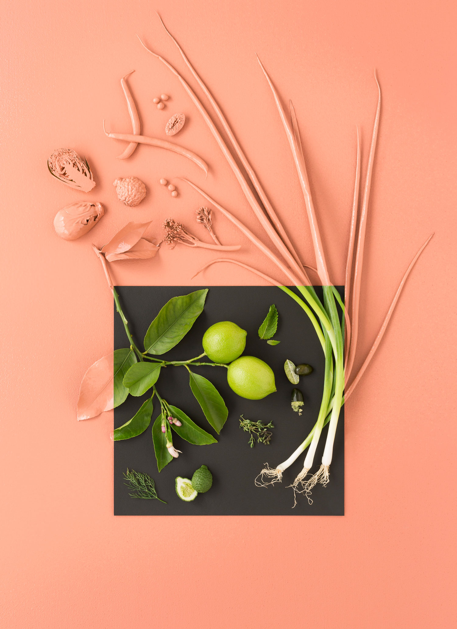 Pink green study.Photo - Sarah Anderson. Art Direction/ Styling - Zoe Hodgens.