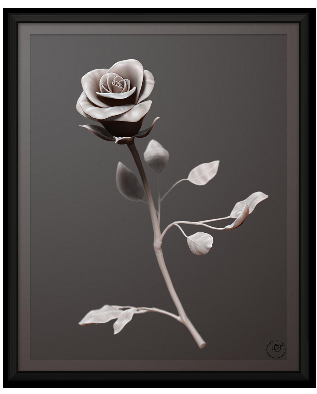 Mother's Day Rose (Render)