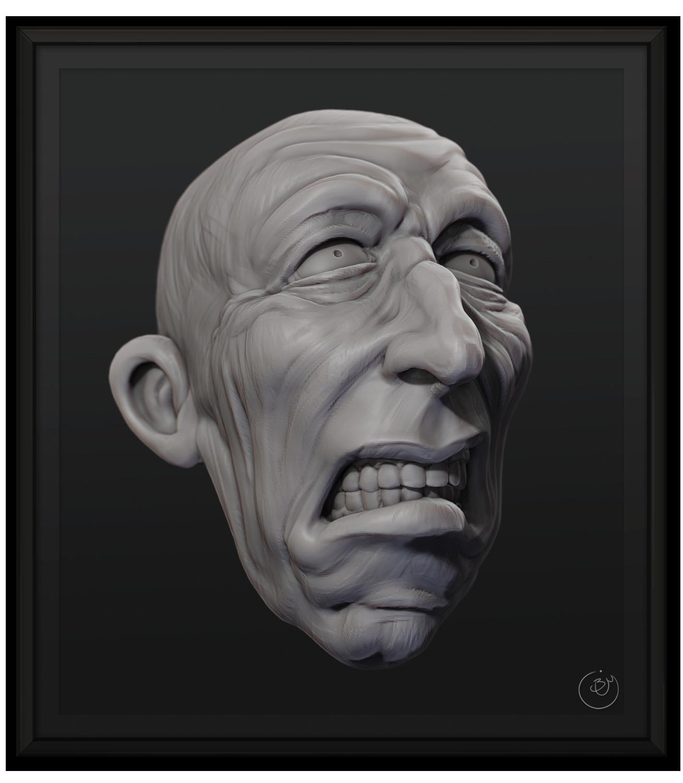 Skewed Faces - Startled