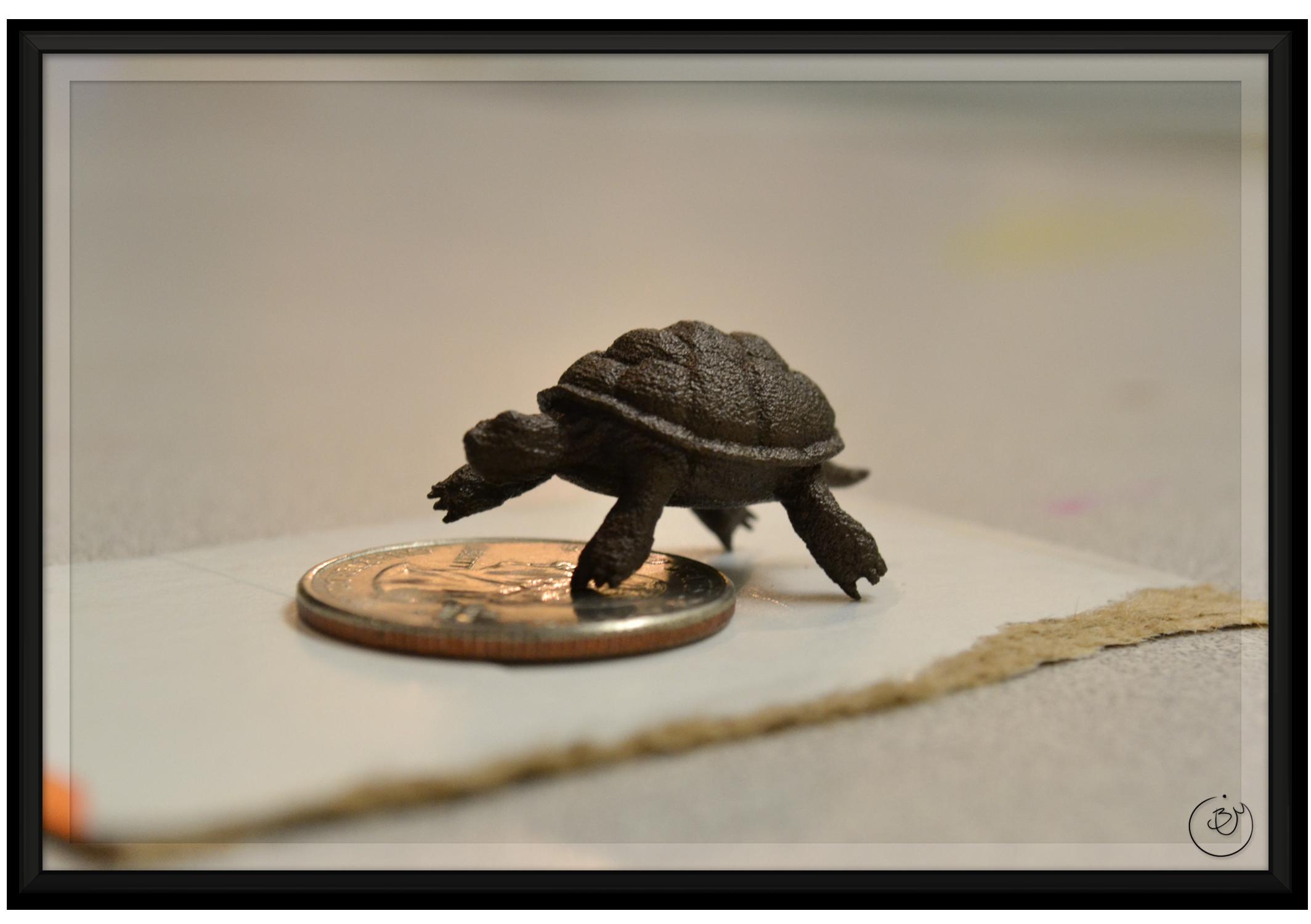 Print (Matte Bronze Steel, Tiny)