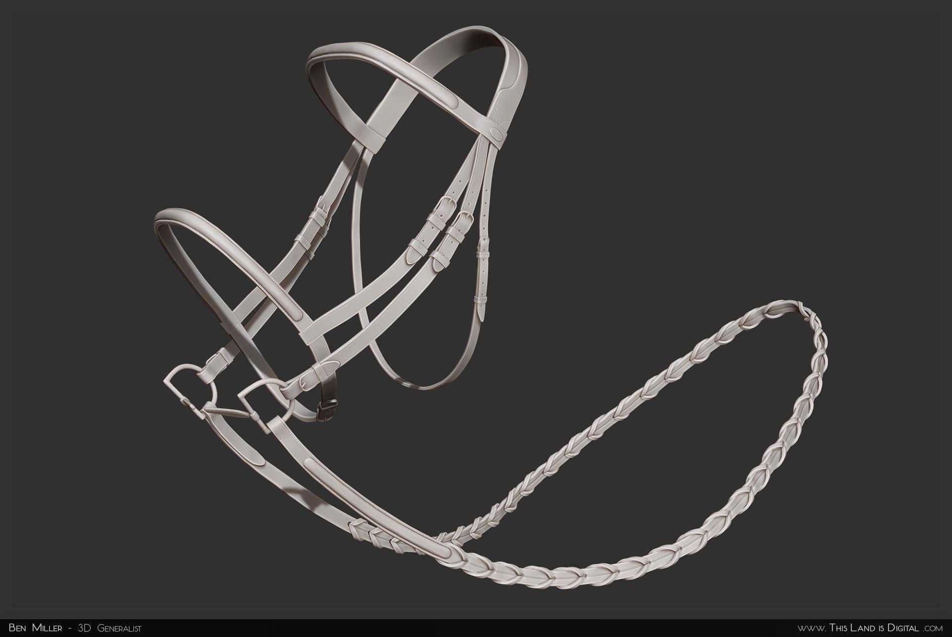 TLiD_WeddingSculpture-Bridle.jpg