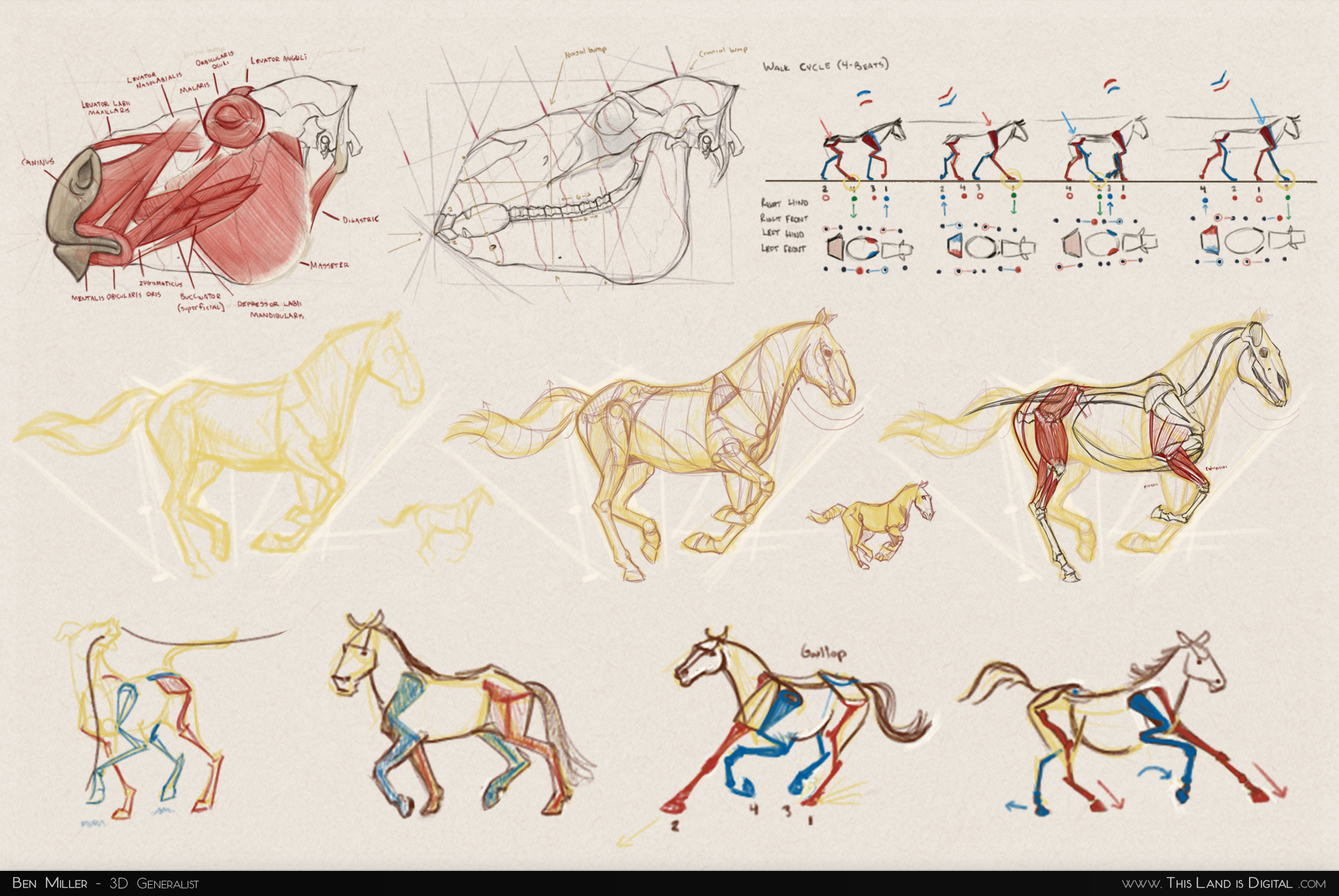 TLiD_WeddingSculpture-Sketches_01-Studies.jpg