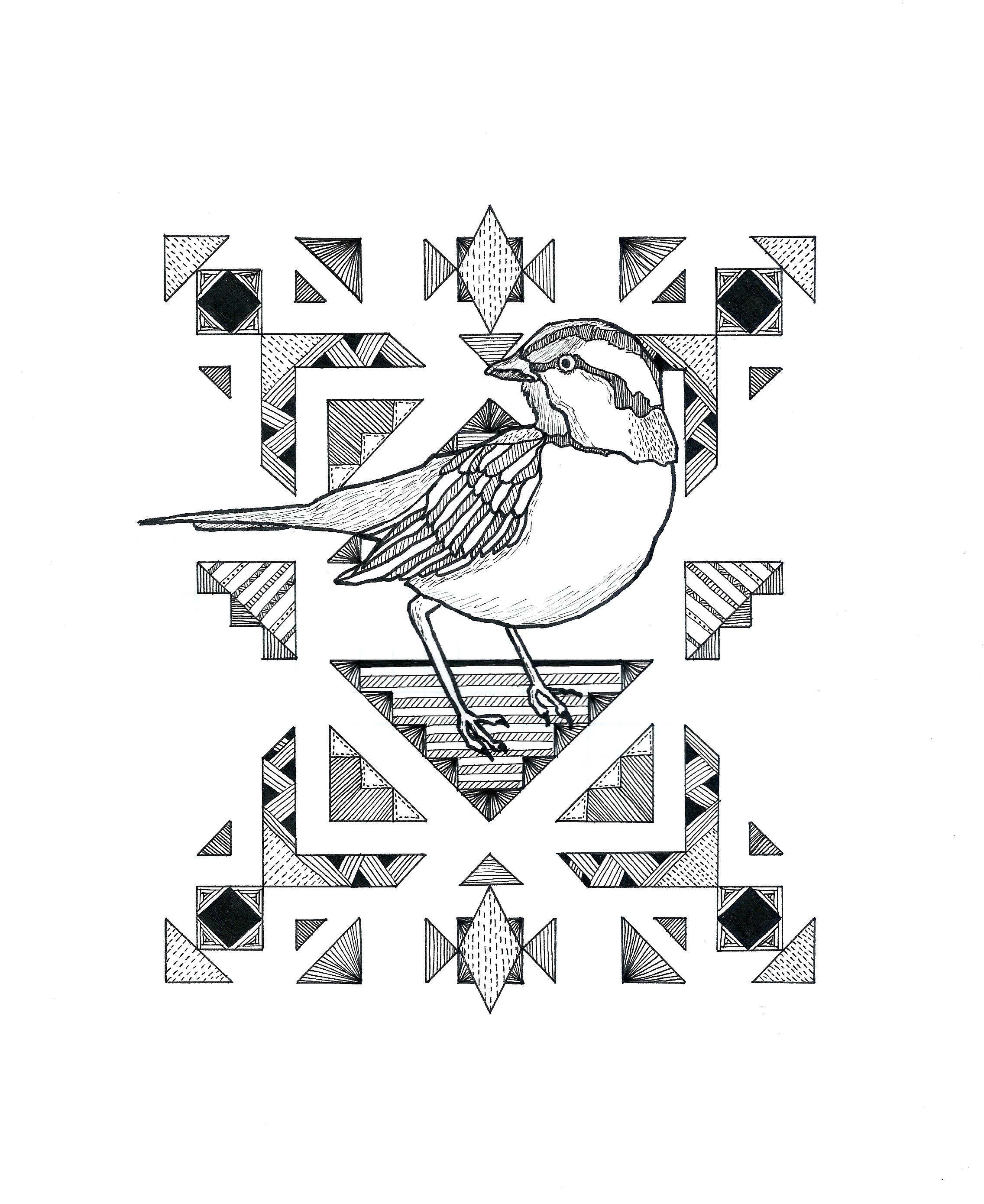 Little Sparrow.JPG