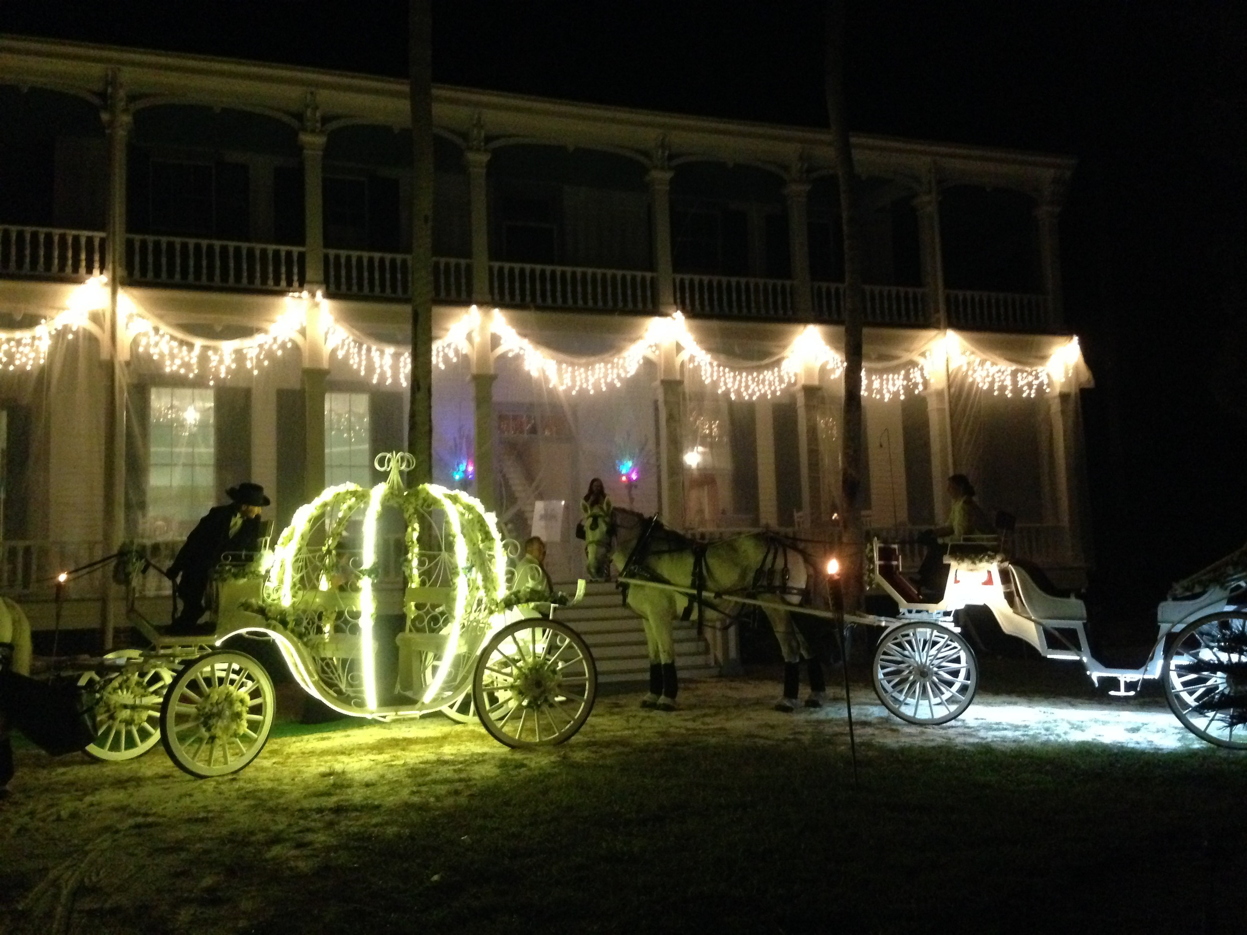 Fundraiser - working with our friends from  HighHorse Carriage Company  in DeBary, FL