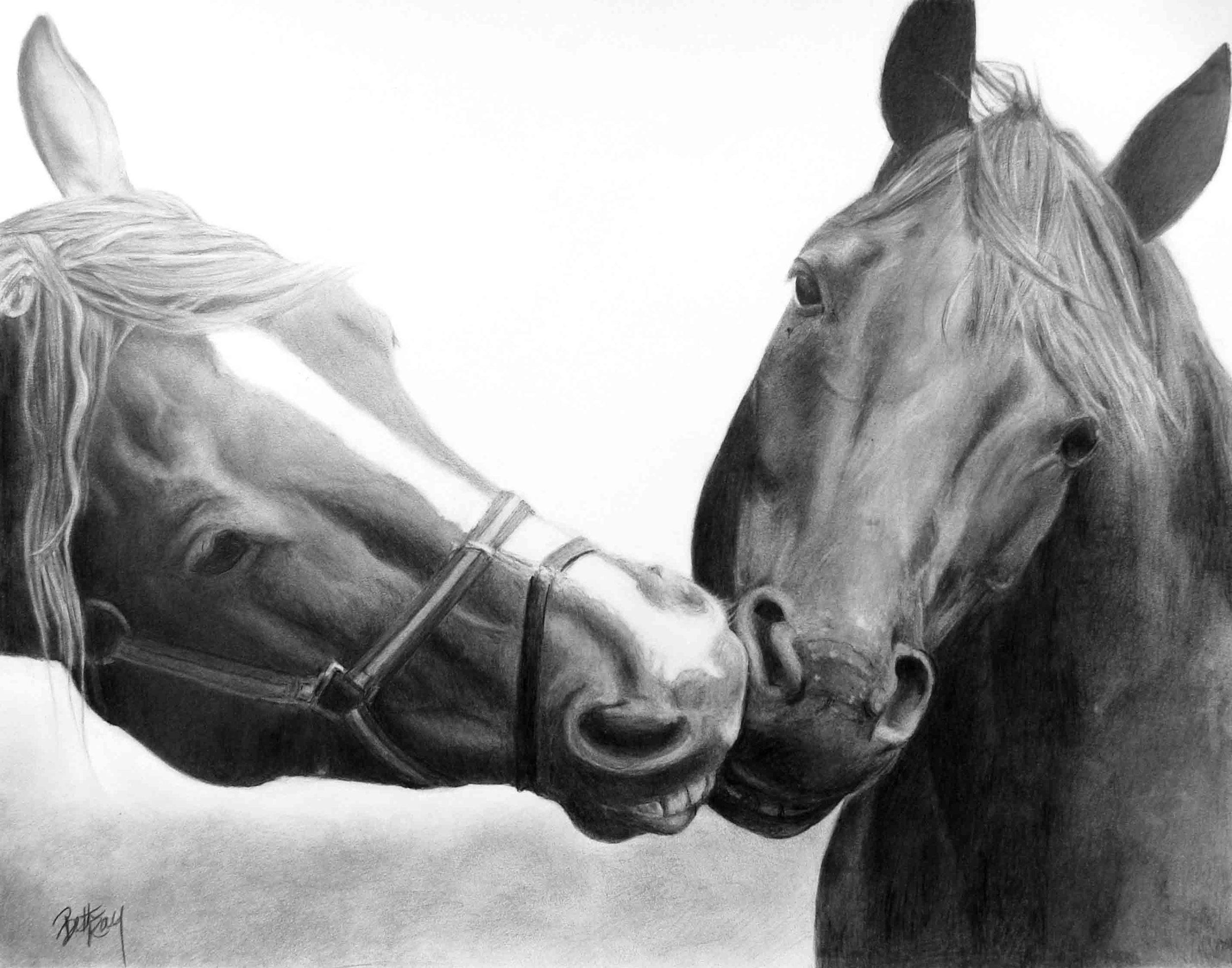 Kissing Horses-FD.jpg