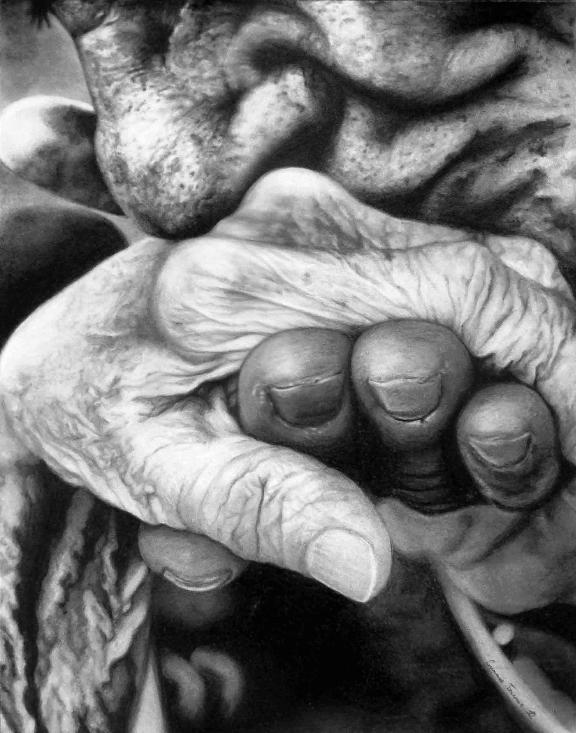 Old Hands-FD.jpg