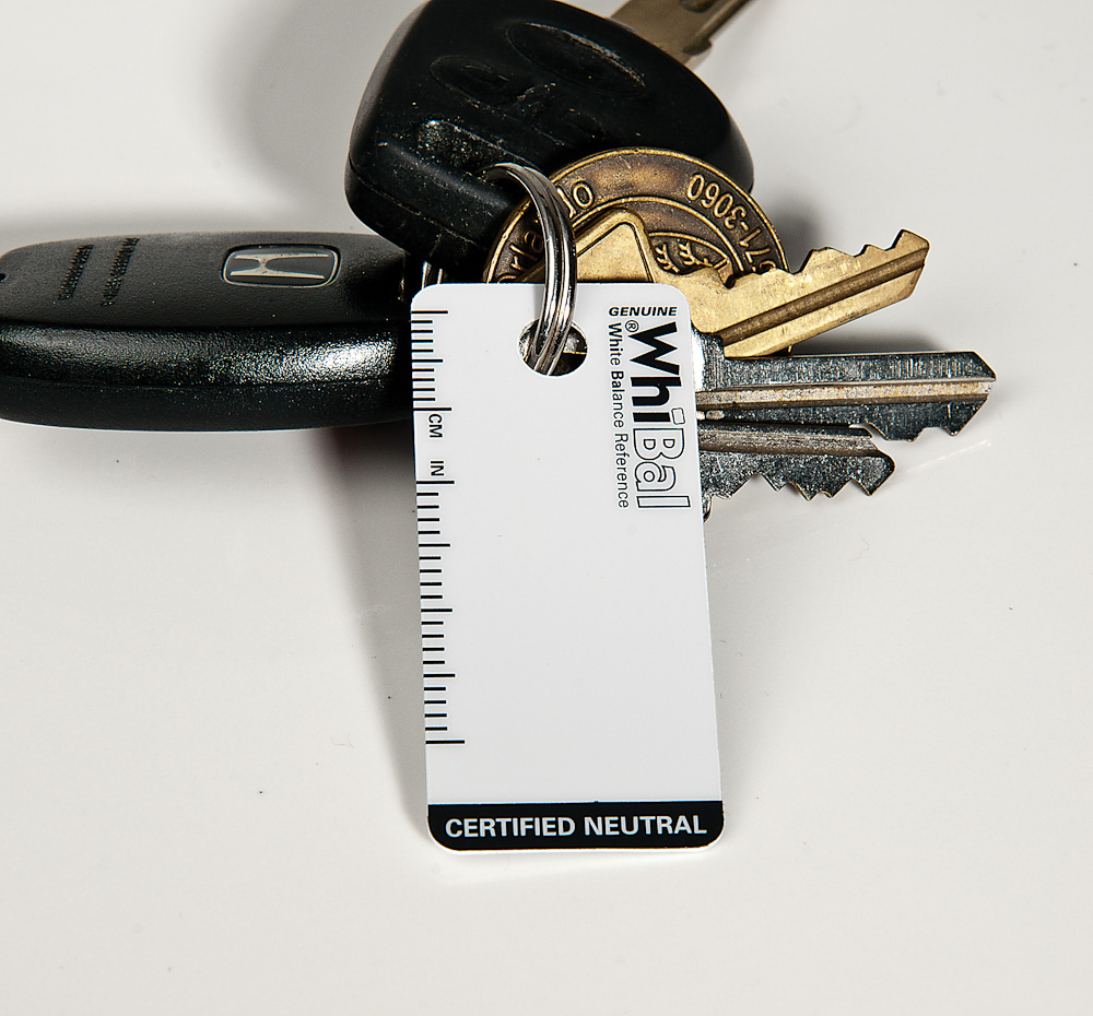 Keychain Card - Includes S-Hook. (Keys and cars not included).