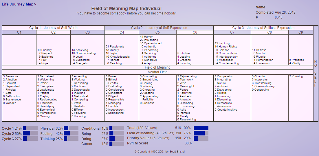 An individual Field of Meaning Map contains key information about one's concerning, motivational and aspiring values. It also indicates potential career paths. This map is, metaphorically speaking, a personal treasure hunt map.