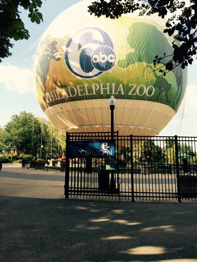 We're at the Philly Zoo pouring beer!