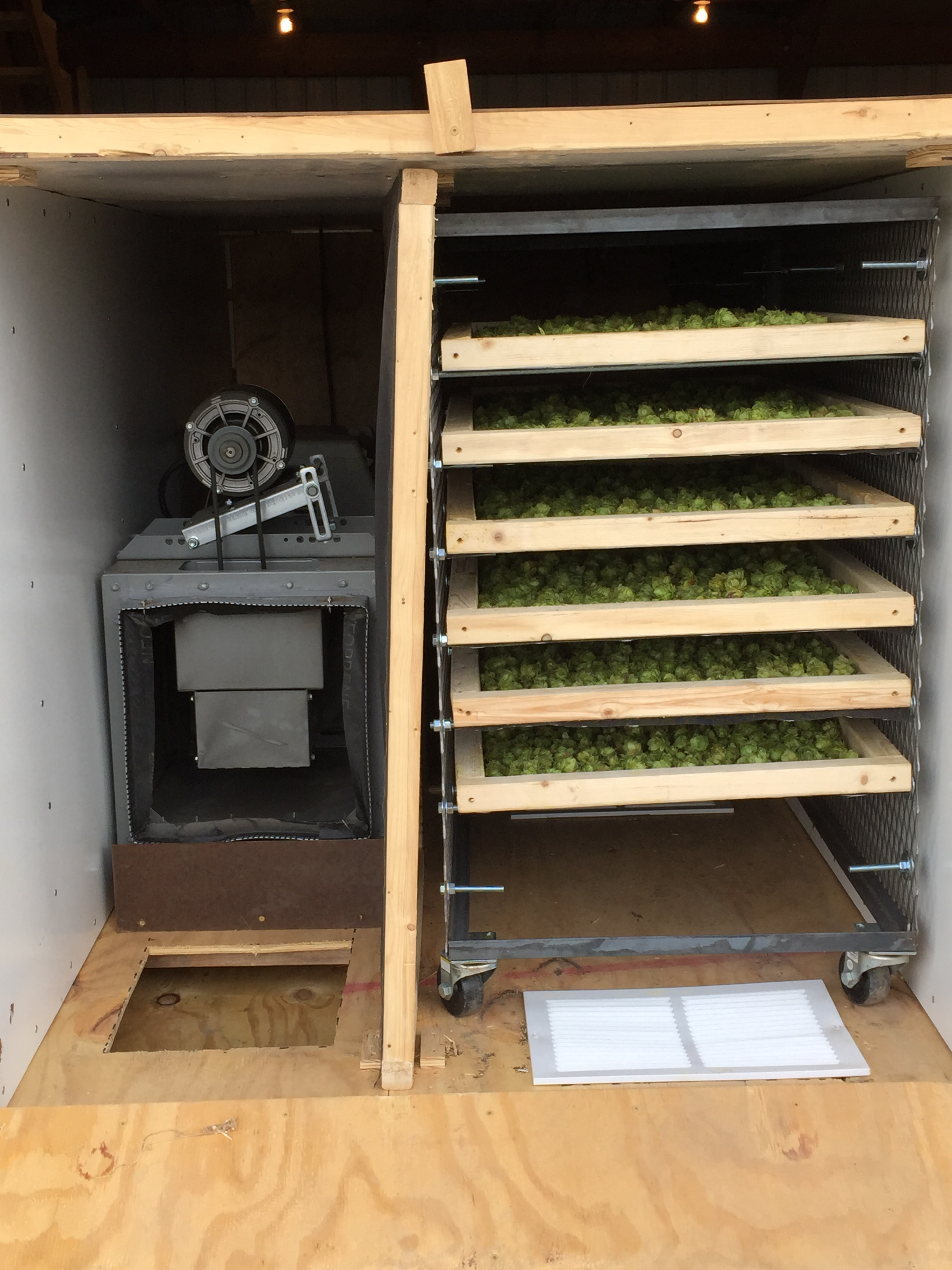 Drying Station.  Lowering the moisture content of hops