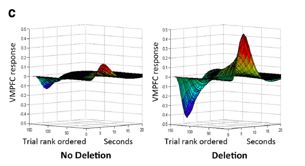 The graph above shows a striking difference between the ventral medial prefrontal cortex (VMPFC)brain activationin participants with no receptor mutation (left) and those with the mutation (right).