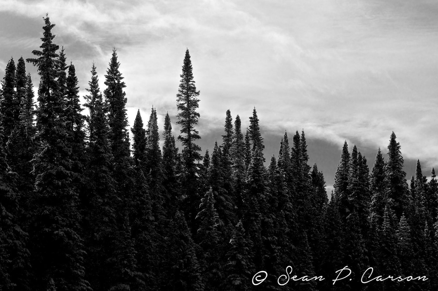 140014-19414-20141031_north-by-north-east-exposure-studio-photography-sean-p-carson.jpg