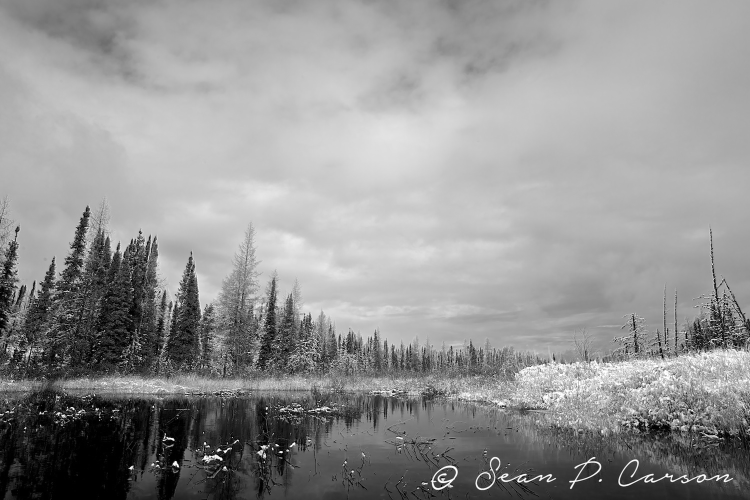 140014-19445-20141031_north-by-north-east-exposure-studio-photography-sean-p-carson.jpg