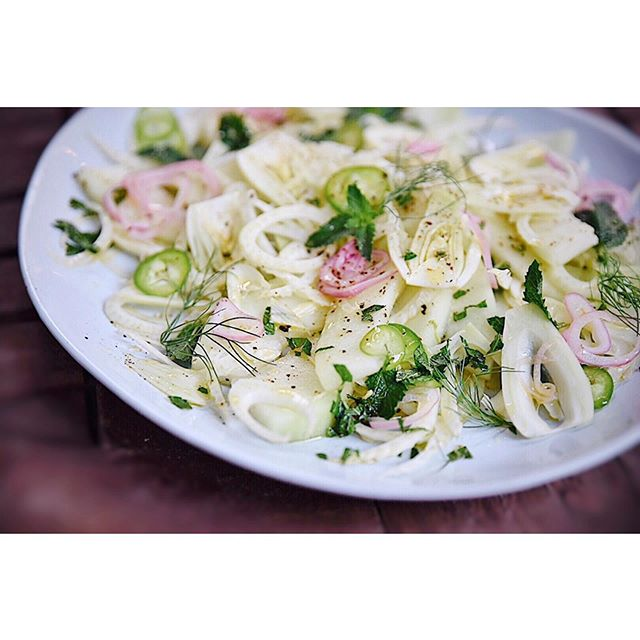 S w e e t &  h e r b a c e o u s  fennel, honeydew, pickled shallots, mint and peppers... so fresh and tasty #trynewthings #summerpotluck #summereats / @eyeswoon recipe . . . . #homechef #culinaryfirst #livelikeyouretraveling #homecooking #potluck #chicagoeats #culinaryadventures #chicagofoodie #salad #fresh #veggielovers #vegan #healthy #healthyliving #saladlover #kitchenadventures #colorventures #diningtraveler #globalcreator #yummy #visualsoflife #eyeswoon #trytheworld #wcbceats